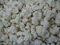 IQF cauliflowers florets,Frozen cauliflowers florets 7