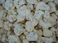 IQF cauliflowers florets,Frozen cauliflowers florets 8