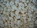 IQF cauliflowers florets,Frozen cauliflowers florets 1