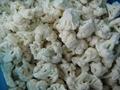 IQF cauliflowers florets,Frozen cauliflowers florets 9