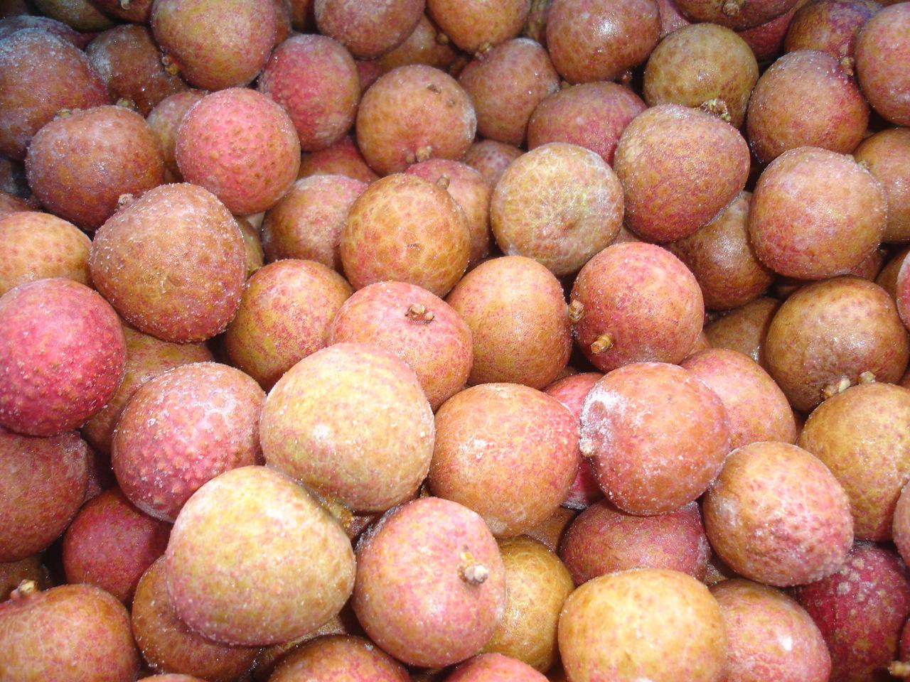 IQF Lychees ,Frozen Litchi,IQF Litchis,Frozen Lychees 3