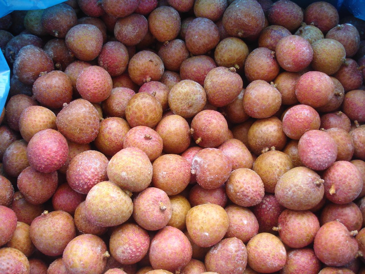 IQF Lychees ,Frozen Litchi,IQF Litchis,Frozen Lychees 7