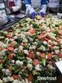 冷凍混合蔬菜,速凍混合蔬菜 18