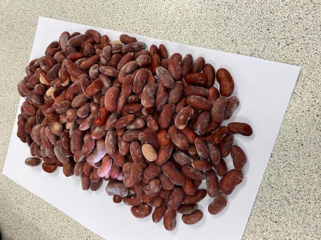 冷凍芸豆,速凍芸豆 11
