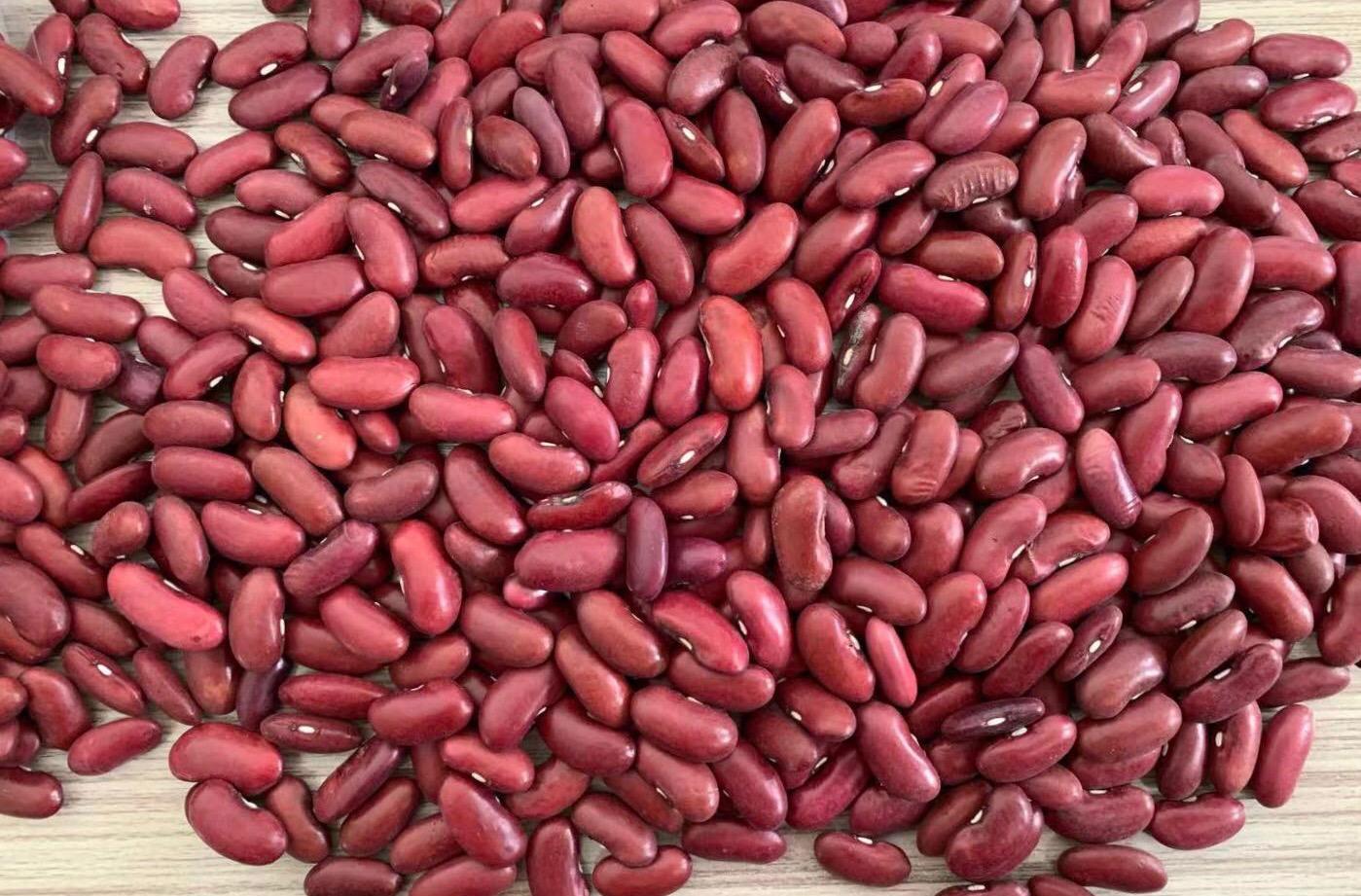 冷凍芸豆,速凍芸豆 16