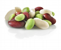 IQF Mixed Kidney Beans,Frozen Mixed Kidney Beans,cooked,ready to eat