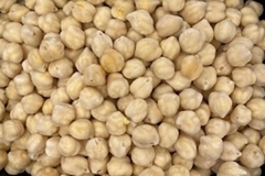 IQF Chick Peas,Frozen Chick Peas,cooked