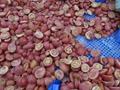 IQF cherry tomatoes,Frozen cherry tomato,wholes/slices/ha  es/dices 7