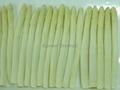 IQF white asparagus cuts & tips,Frozen White Asparagus tips & cuts 5