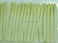 IQF white asparagus cuts & tips,Frozen White Asparagus tips & cuts