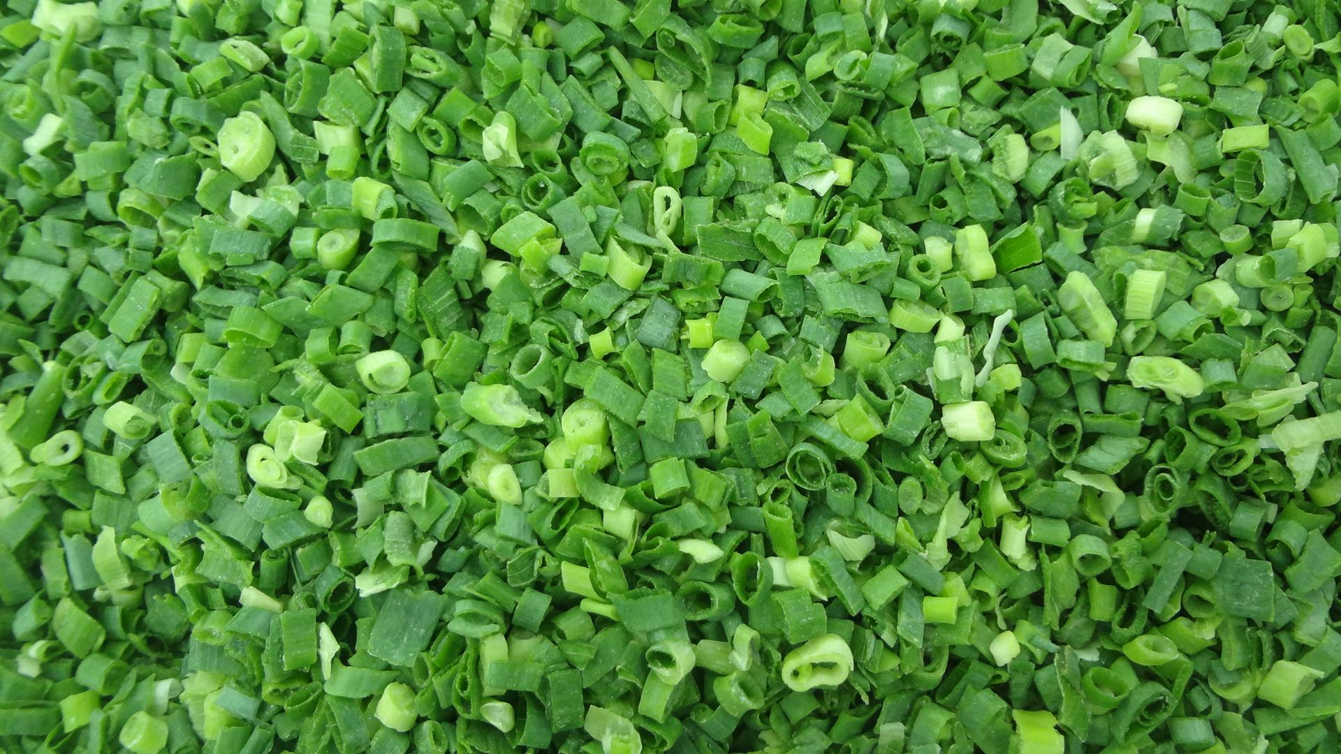 IQF Spring Onions ,IQF Green Onions,IQF Welsh Onions (dices/cuts/slices/chopped) 13