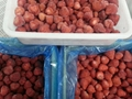 IQF Whole Strawberries,Frozen Whole Strawberries,Uncalibrated
