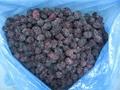 冷凍黑莓,速凍黑莓 4