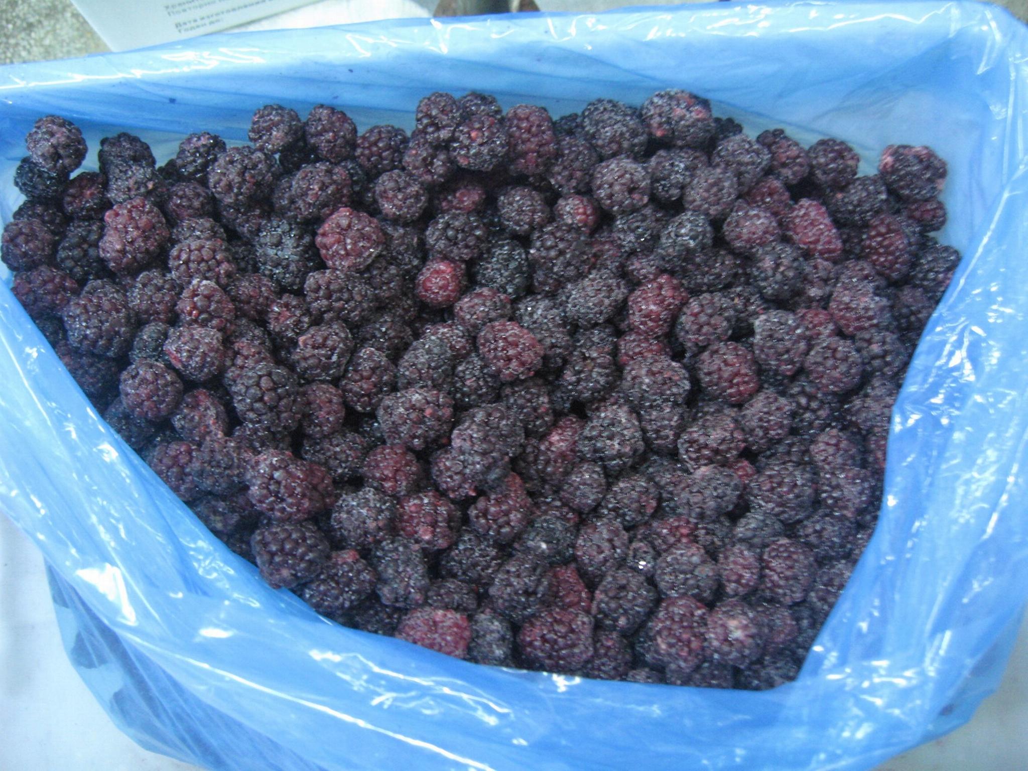 冷凍黑莓,速凍黑莓 5