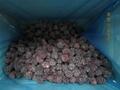 冷凍黑莓,速凍黑莓 8