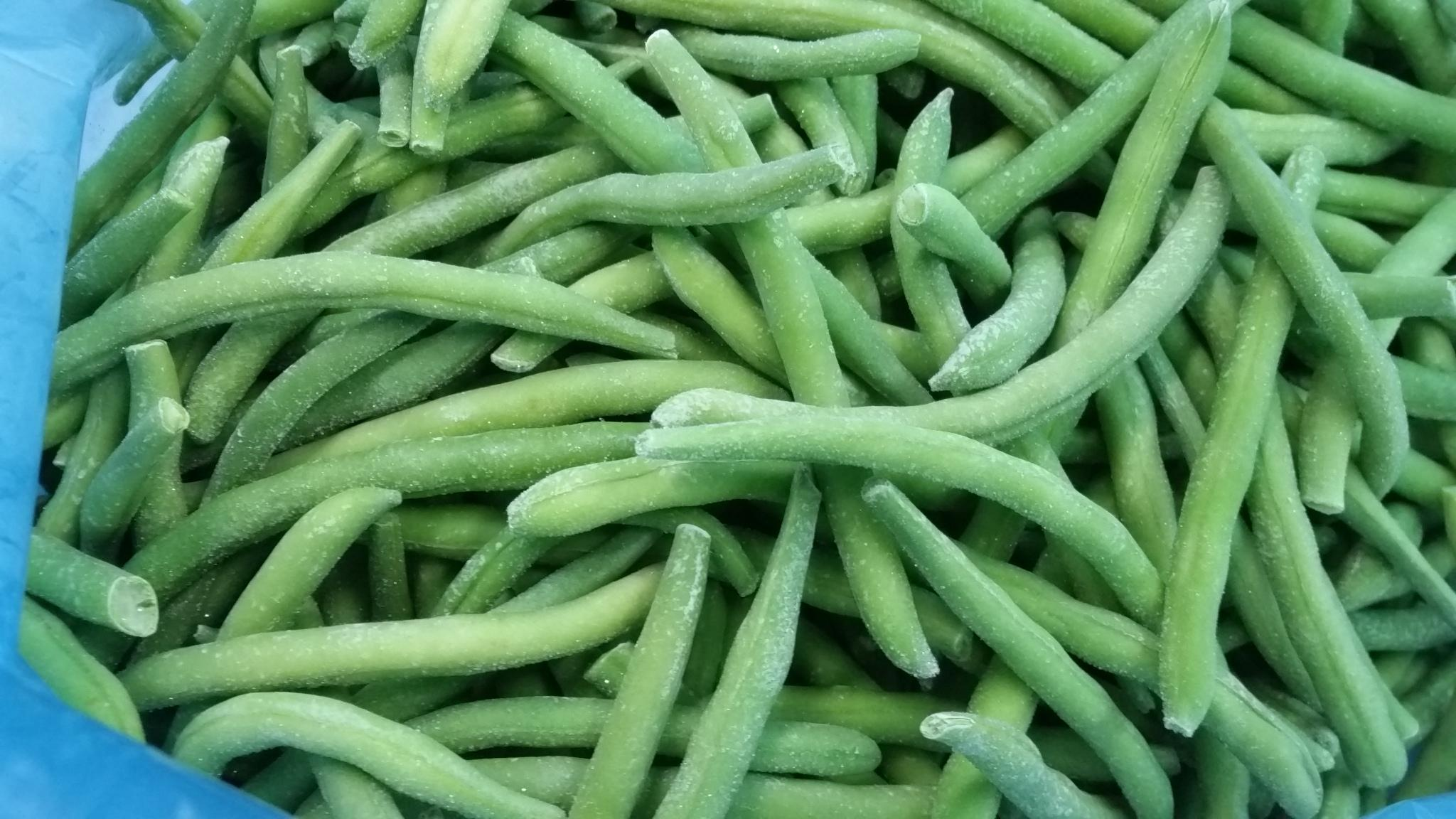 IQF Whole Green Beans ,Frozen Green Beans Wholes,IQF cut green beans 5