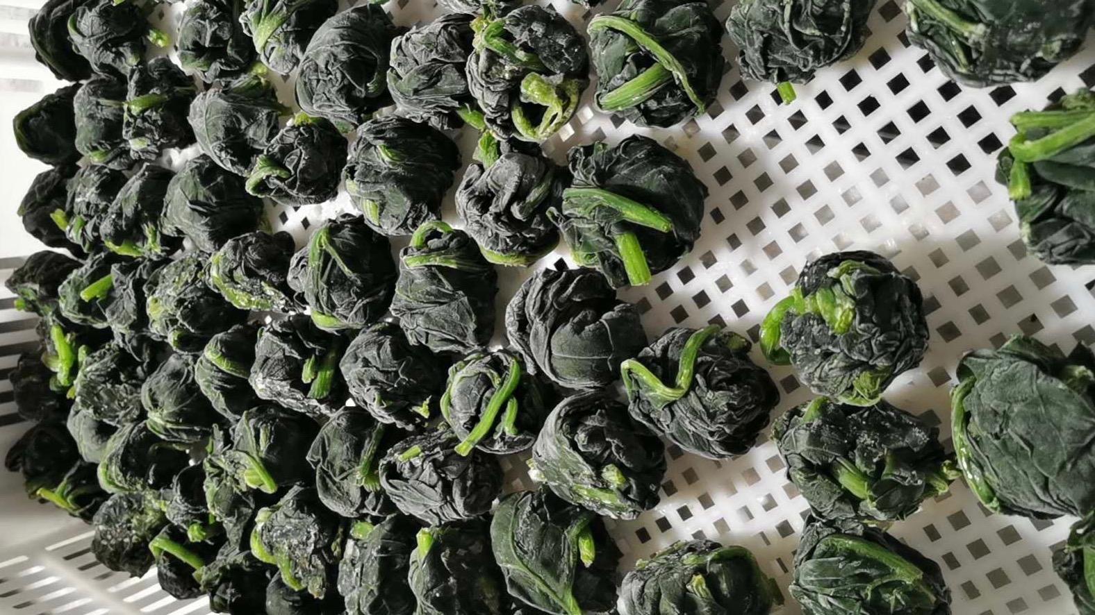 單凍菠菜段,盤凍菠菜段,冷凍菠菜葉球 17