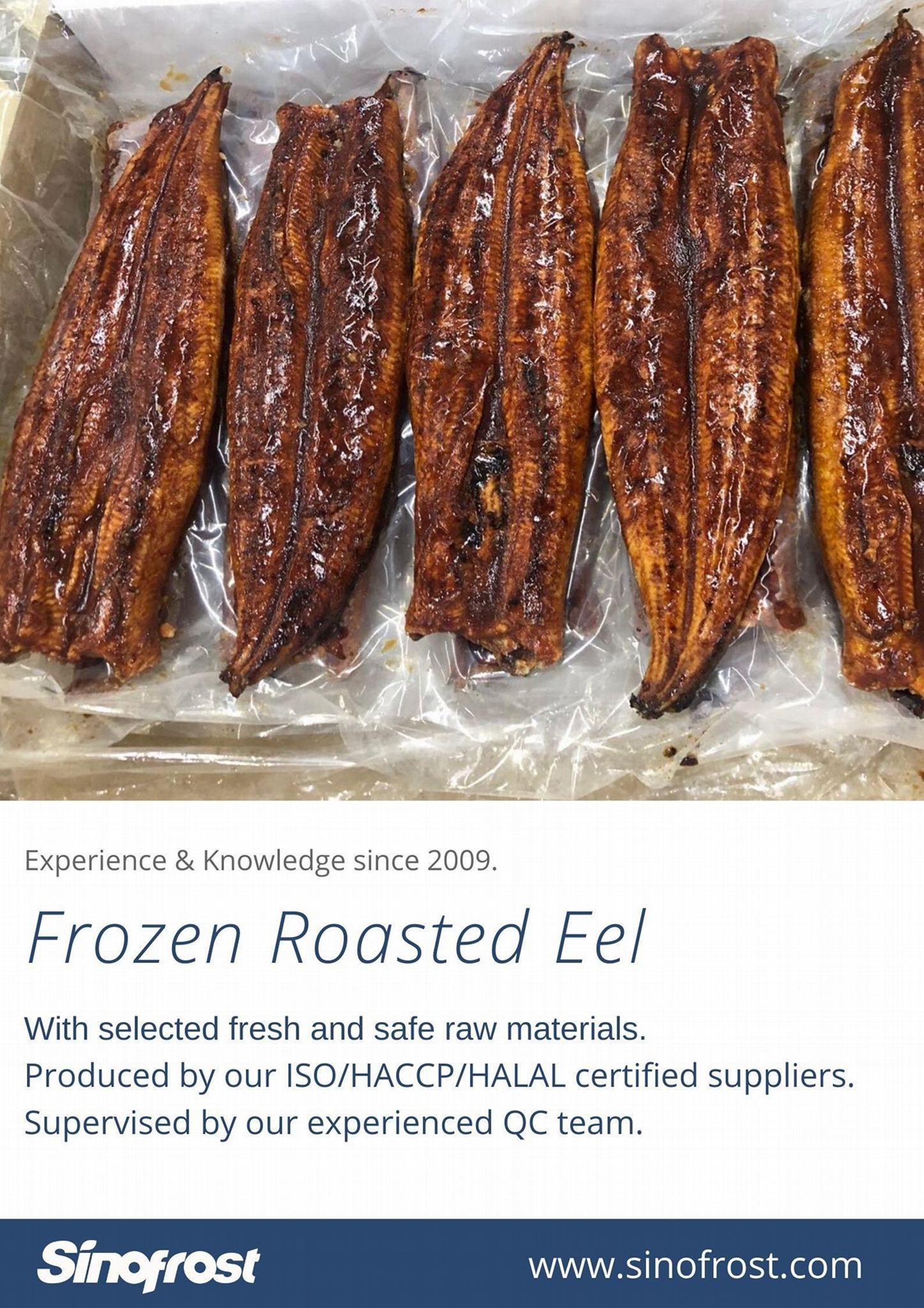 IVP Packed, Frozen Roasted Eel,Frozen Grilled Eel,Unagi Kabayaki in vacuum bag 12