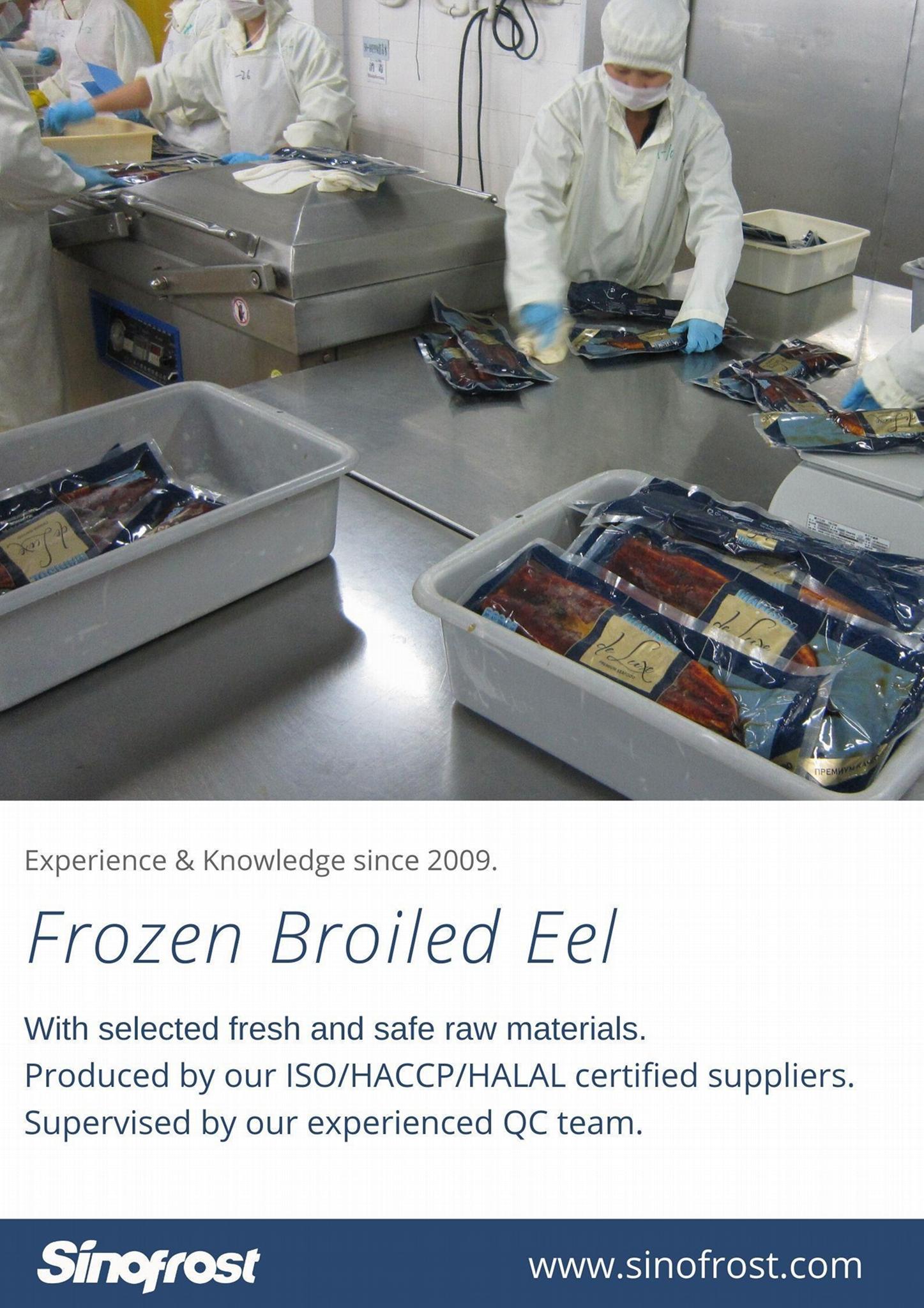 IVP Packed, Frozen Roasted Eel,Frozen Grilled Eel,Unagi Kabayaki in vacuum bag 16