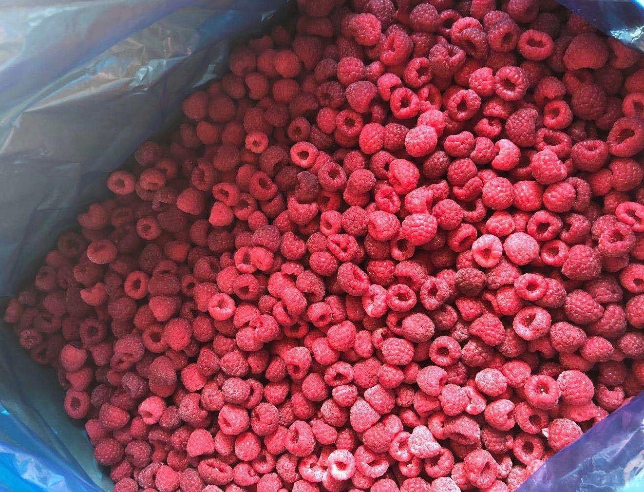 冷凍樹莓,速凍樹莓 5
