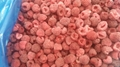 IQF raspberries crumbles,Frozen raspberry crumbles,red,cultivated 17