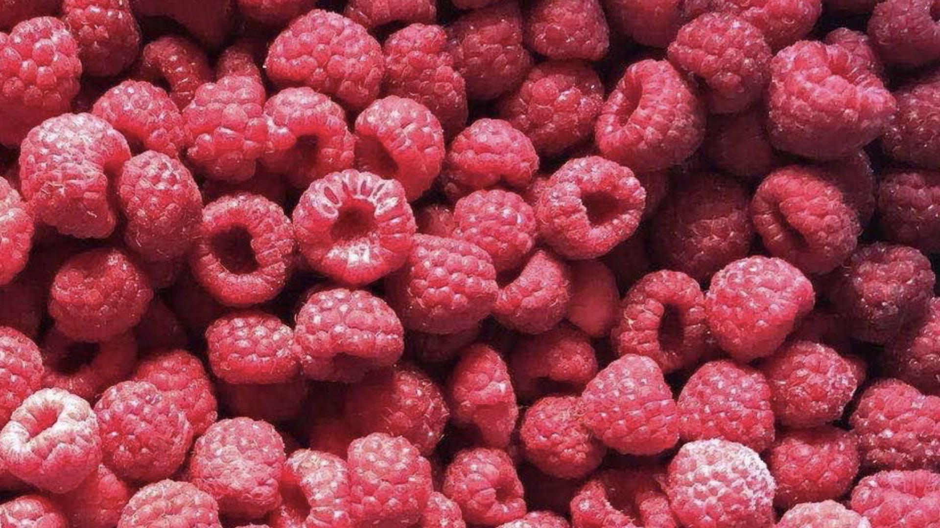IQF Raspberries,Frozen Raspberry,wholes/brokens/crumbles/puree 2