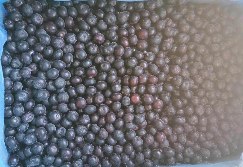 冷凍藍莓,速凍藍莓 2