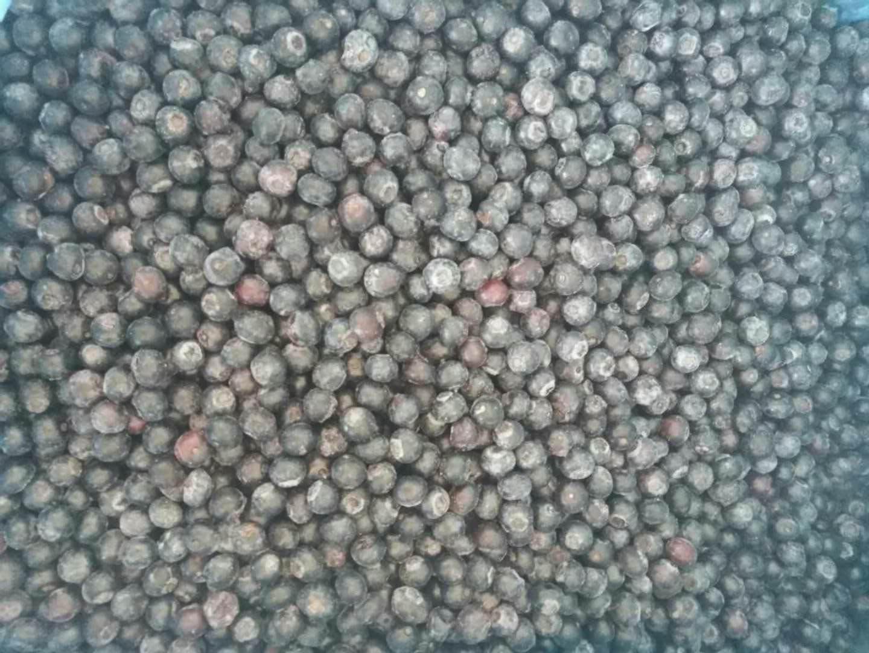 冷凍藍莓,速凍藍莓 14