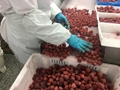 IQF Strawberries,Frozen Whole Strawberries,IQF Strawberry,American no.13 variety 10