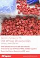 冷凍草莓,速凍草莓,冷凍草莓泥,速凍草莓泥 16