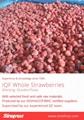 Frozen Strawberries,Frozen Strawberry,IQF Strawberries,Honey Variety 9