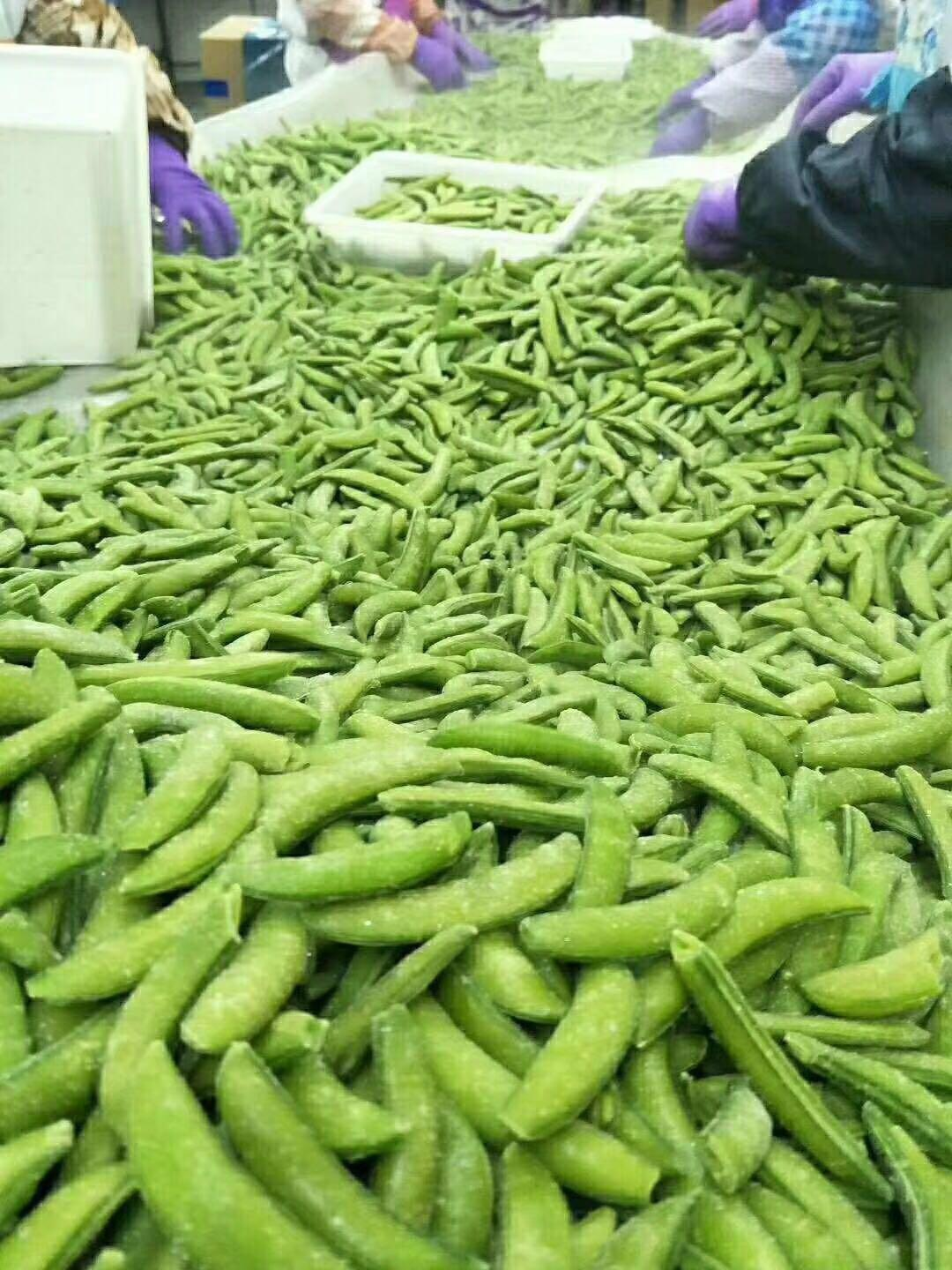 IQF Sugar Snap Peas,Frozen Sugar Snap Peas 8
