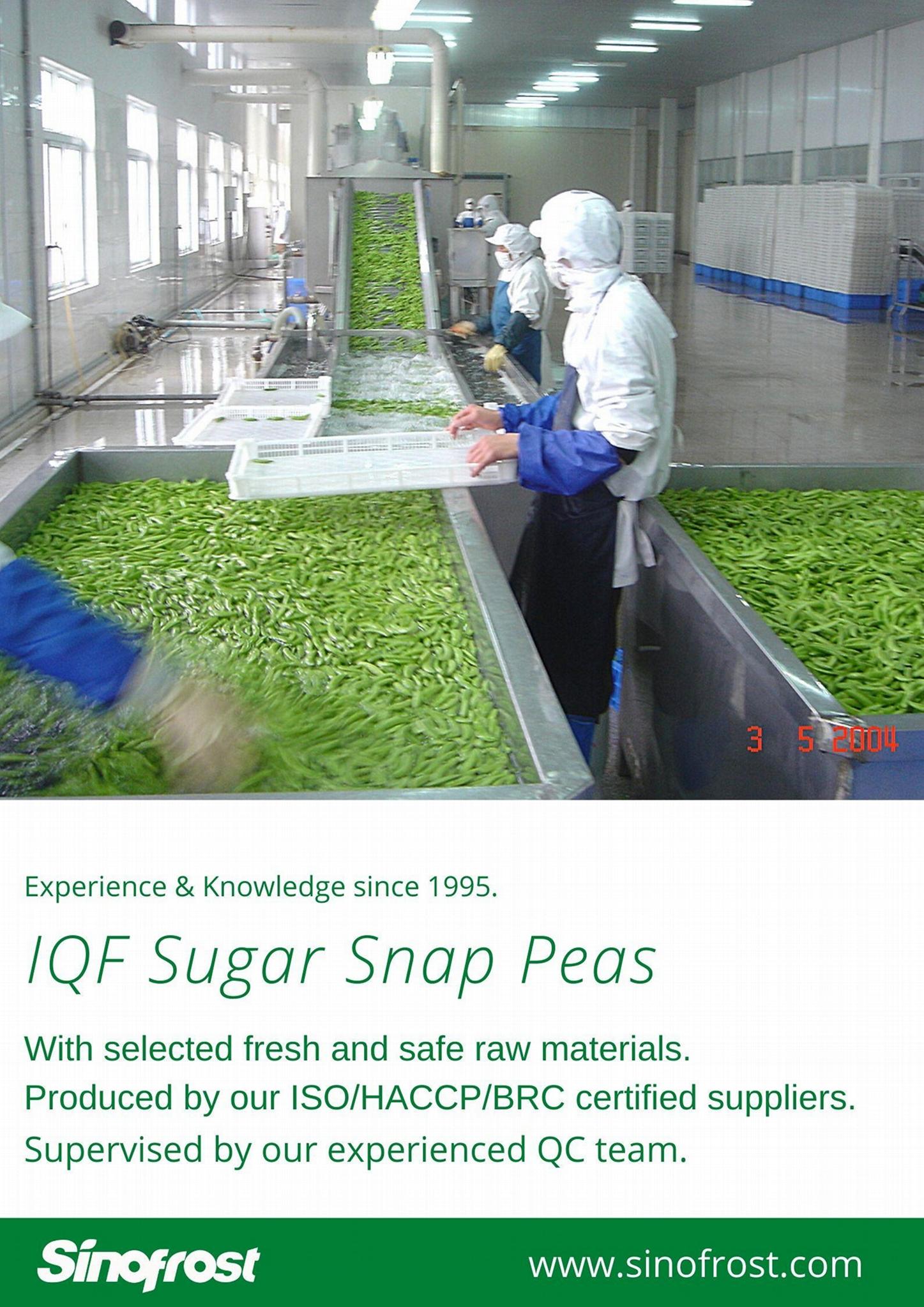 冷凍甜豌豆,速凍甜豌豆 12