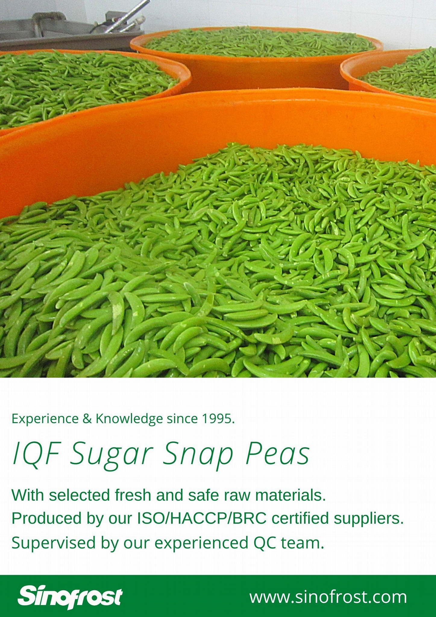 IQF Sugar Snap Peas,Frozen Sugar Snap Peas 13
