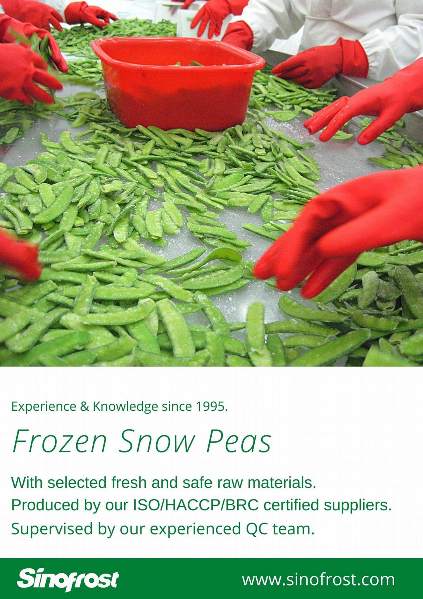 冷凍荷蘭豆,速凍荷蘭豆 12