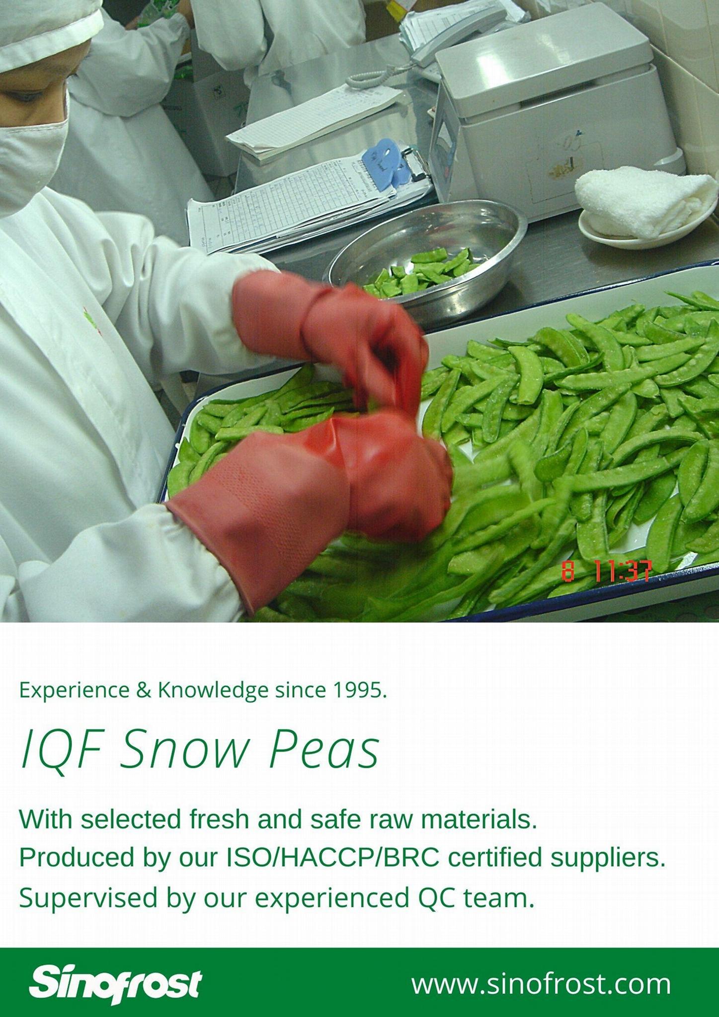 冷凍荷蘭豆,速凍荷蘭豆 14