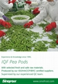冷凍荷蘭豆,速凍荷蘭豆 16
