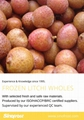 IQF Peeled Lychees,Frozen Peeled Lychees,IQF Peeled Litchi,IQF Pitted Lychees 13