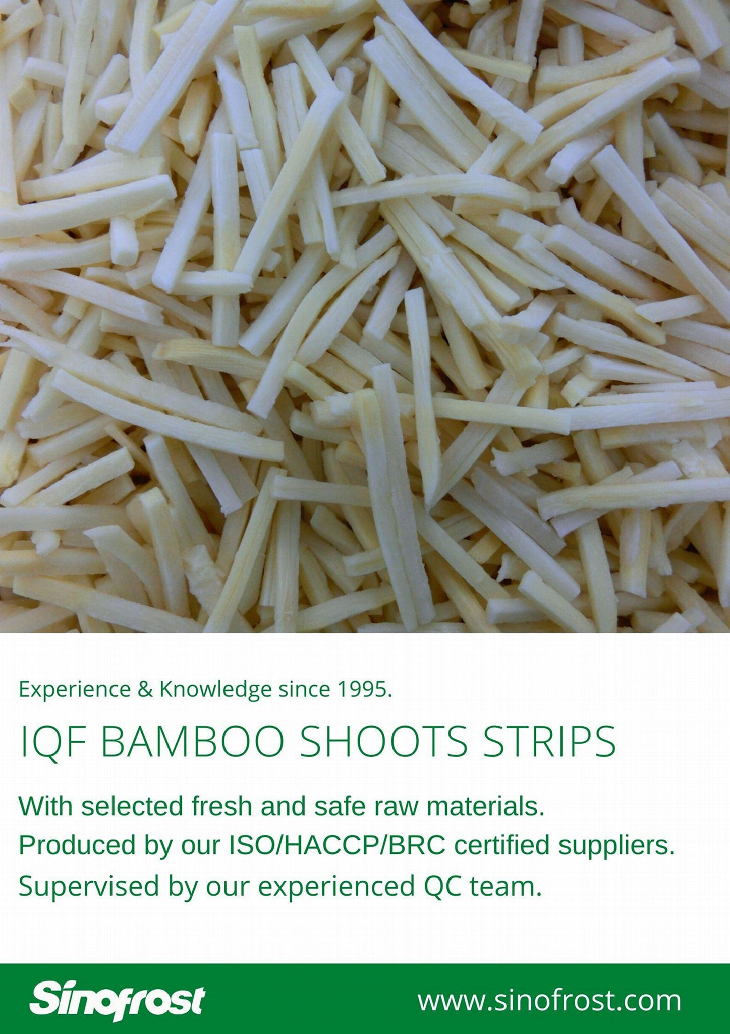 IQF bamboo shoots strips,Frozen bamboo shoots strips,blanched 18