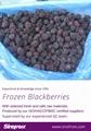 2020 crop IQF blackberries,Frozen Blackberry