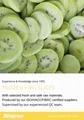 IQF Sliced Kiwi ,Frozen Sliced Kiwi,IQF Kiwi Slices,Frozen Kiwi Slices 7