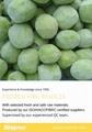 冷凍獼猴桃,速凍獼猴桃 11