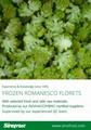 IQF Romanesco Florets, Frozen Romanesco Florets
