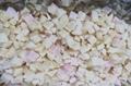 IQF White Peach Dices,Frozen White Peach Dices ,IQF White Peach Cubes