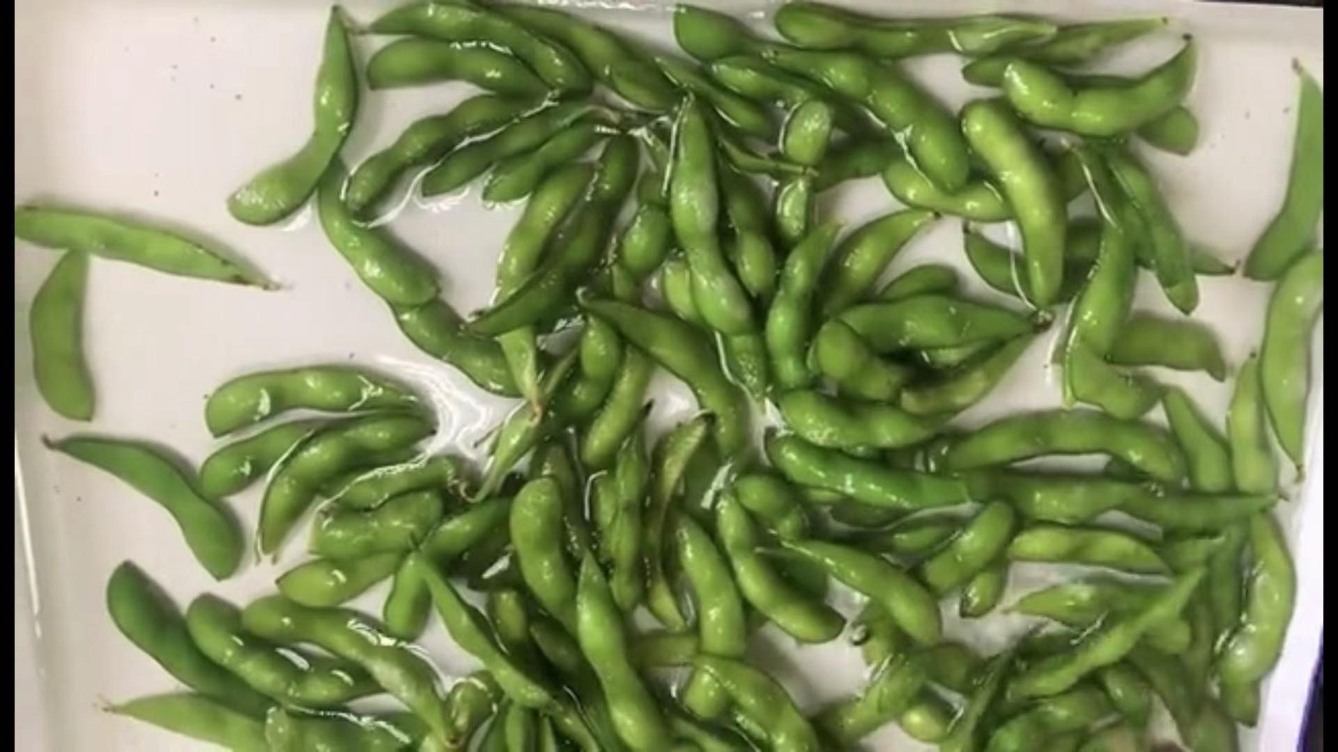 IQF Glazed Green Soybeans,IQF Glazed Edamame,IQF Glazed Soya Beans 18
