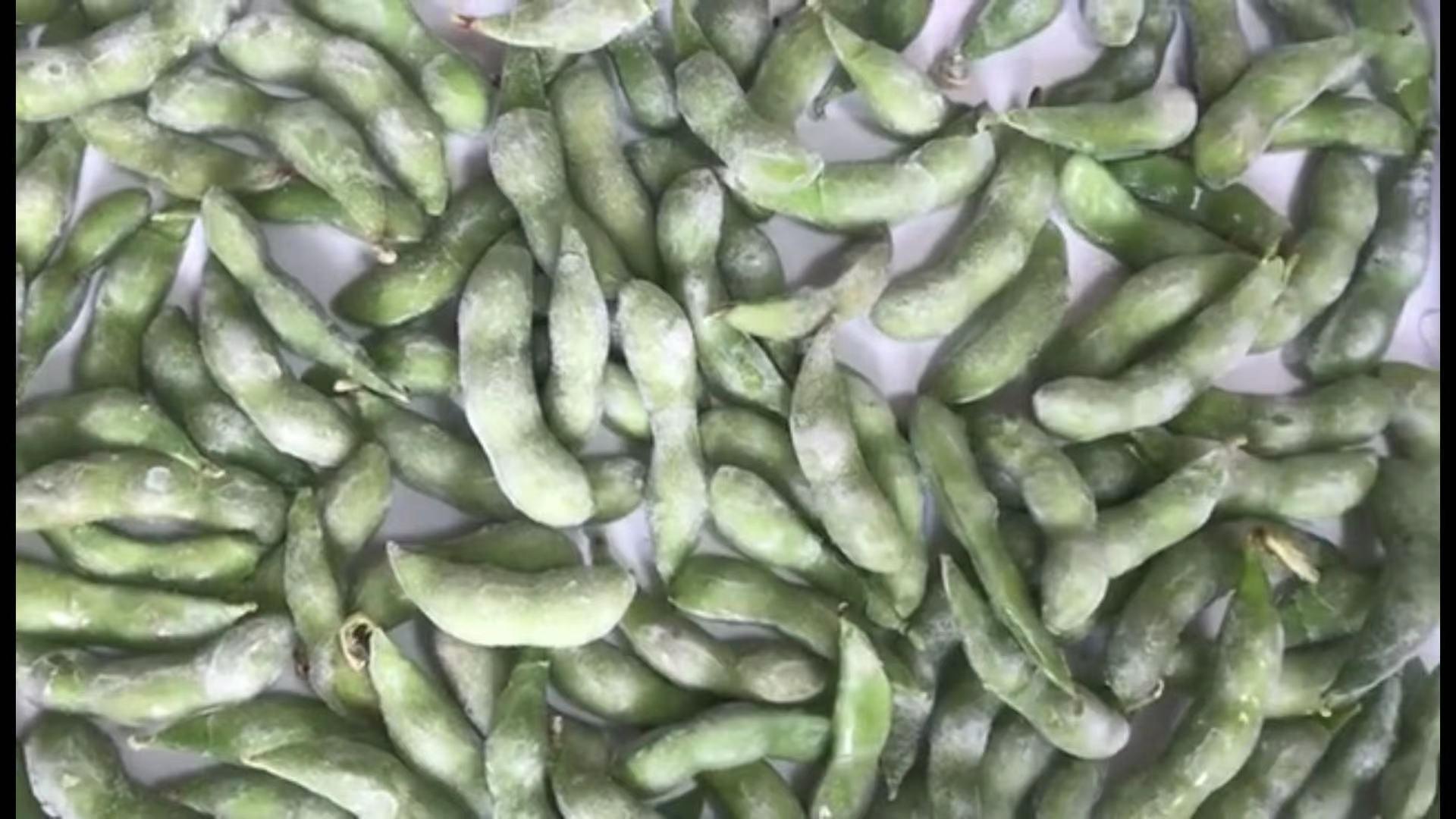IQF Glazed Green Soybeans,IQF Glazed Edamame,IQF Glazed Soya Beans 5