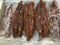 Frozen Roasted Eel Cuts,Unagi Kabayaki Cuts,Unadon Cuts