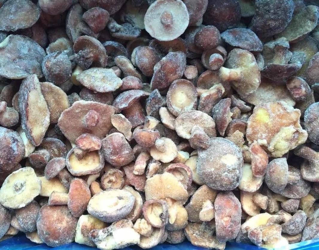冷凍松菇塊,速凍松菇塊 7
