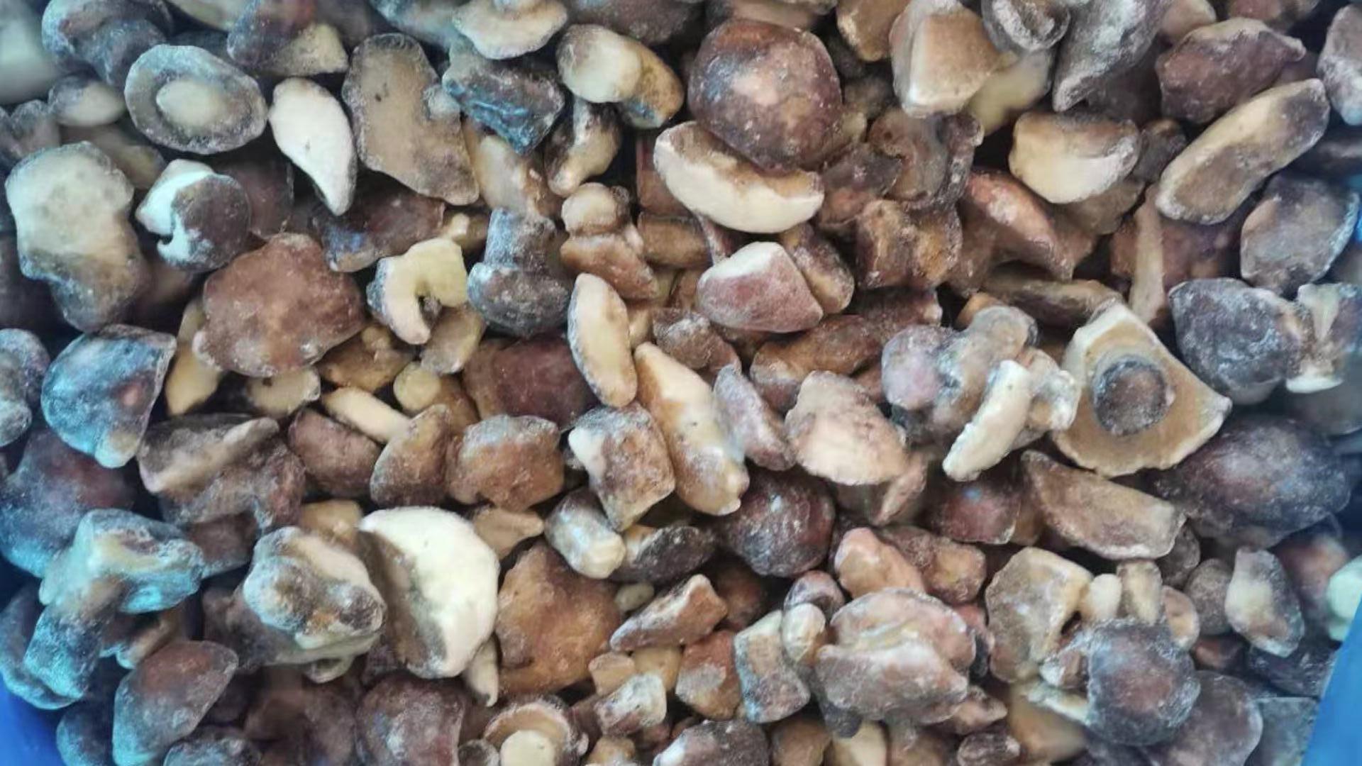 冷凍松菇塊,速凍松菇塊 1