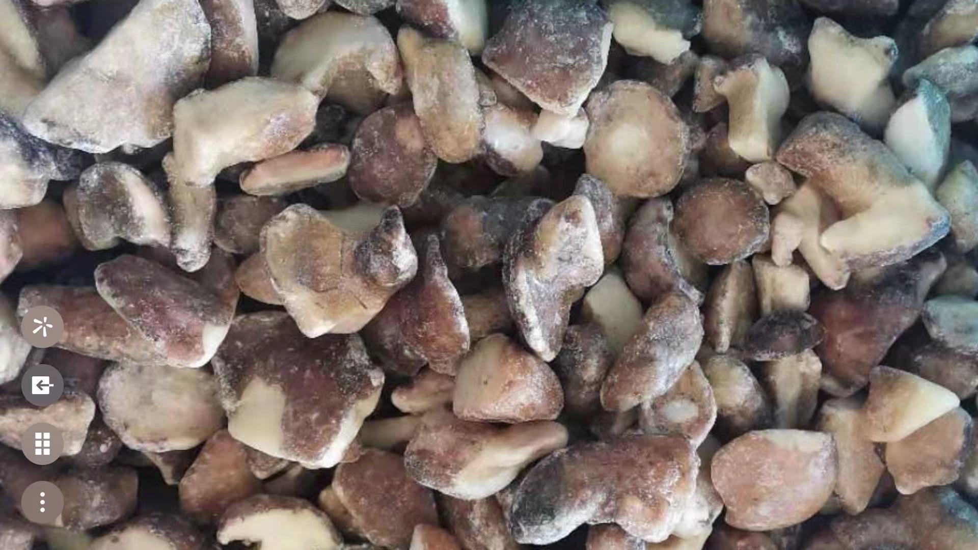 冷凍松菇塊,速凍松菇塊 4